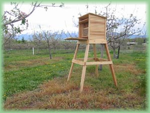 How To Build A Orchard Mason Bee House
